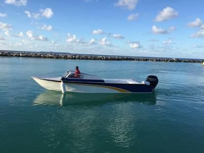 2018 Mercury Marine® FourStroke 115 HP Base | Brainerd Sports